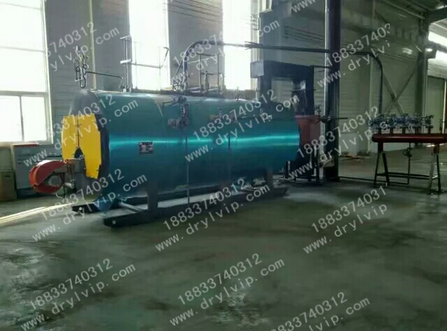 1T低氮蒸汽锅炉调试